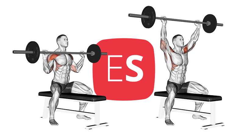 bb-seated-overhead-press