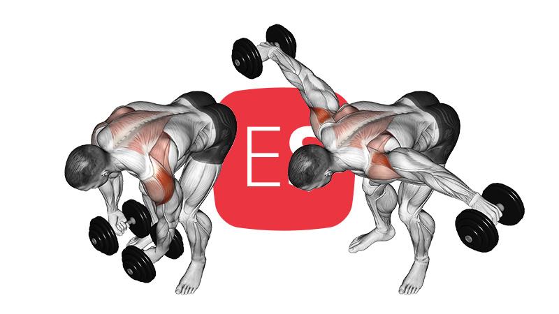 db-rear-lateral-raise