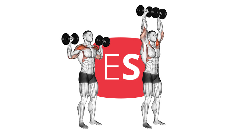 db-standing-shoulder-raise