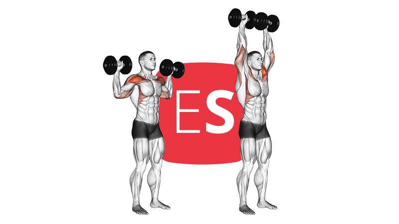 db-standing-shoulder-raise