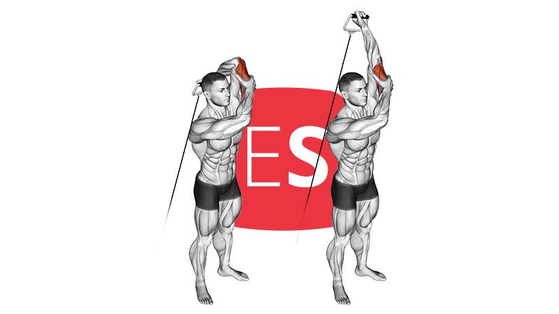 cb-altern-triceps-ext