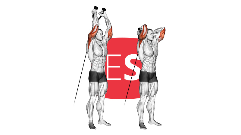 cb-overhead-triceps-ext