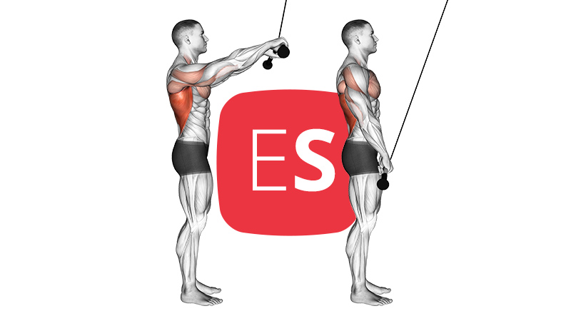 cb-triceps-pushdown
