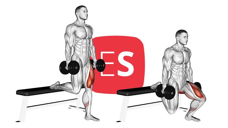 db-split-squat