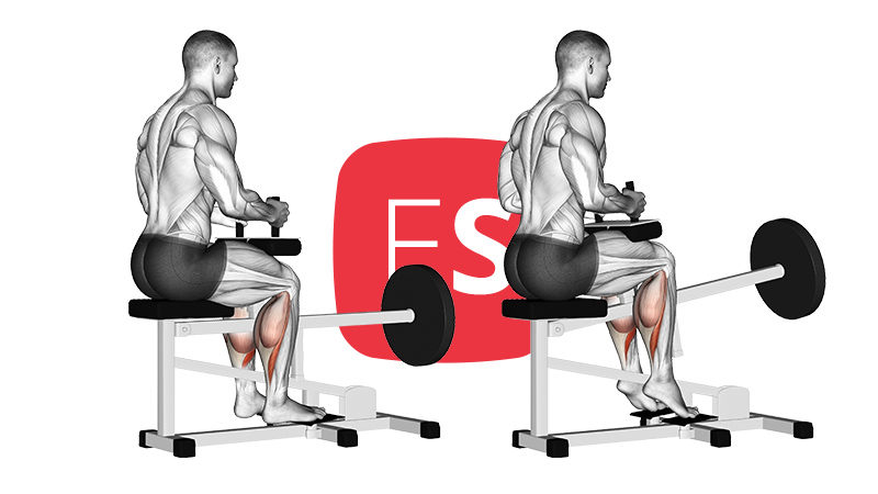 mc-seated-calf-raise